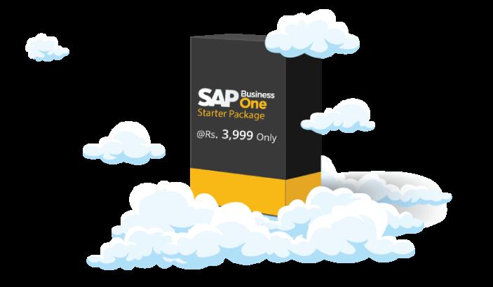 SAP B1 starter package