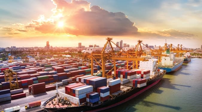 Import/Cargo Clearance Add-On Functionalities